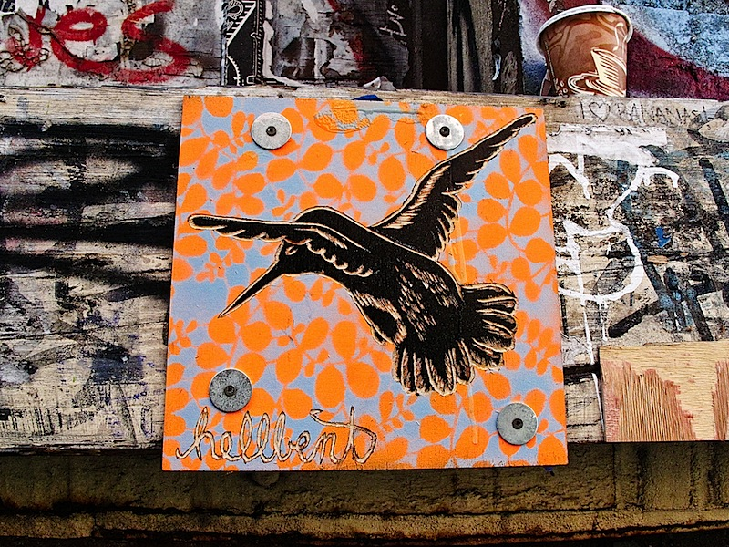 hellbent_hummingbird.jpg