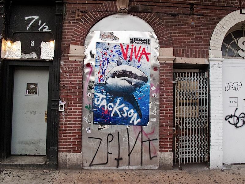 viva_jackson_shark_east_village.jpg