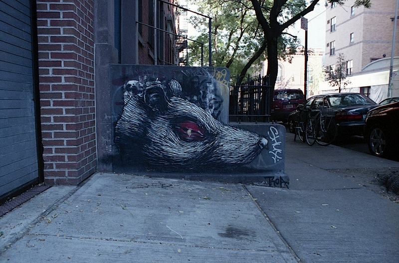 rat street art by ROA in nyc